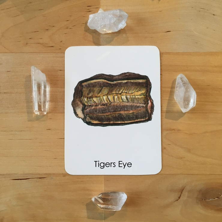 tigers-eye