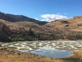Spotted Lake, B.C.