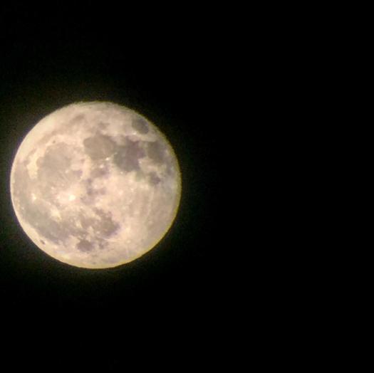 Screen Shot 2017-11-19 at 7.55.49 PM